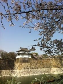 エンジェルスタイルのブログ-sakura3